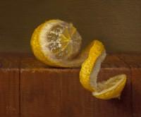 http://www.abbeyryan.com/files/gimgs/th-47_abbey-ryan-partially-peeled-lemon_v2.jpg