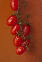http://www.abbeyryan.com/files/gimgs/th-47_abbeyryan-assisi2015-tomatoes-sm_v2.jpg