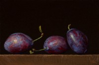 http://www.abbeyryan.com/files/gimgs/th-47_abbeyryan-three-italian-plums.jpg