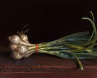 http://www.abbeyryan.com/files/gimgs/th-56_abbeyryan-2016-spring-onions-8x10sm.jpg