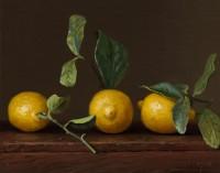 http://www.abbeyryan.com/files/gimgs/th-56_abbeyryan-2016-three-lemons-with-leavesSM.jpg