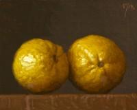 http://www.abbeyryan.com/files/gimgs/th-56_abbeyryan-2016-two-lemons4x5.jpg