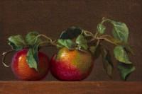 http://www.abbeyryan.com/files/gimgs/th-56_abbeyryan-2017-hand-picked-apples-same-branch-4x6.jpg