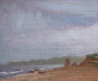 http://www.abbeyryan.com/files/gimgs/th-56_abbeyryan-2017-marthas-vineyard-lucy-vincent-beach-fog.jpg