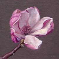 http://www.abbeyryan.com/files/gimgs/th-56_abbeyryan-2018-magnolia-flower-no-2-5x5.jpg