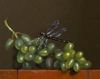 http://www.abbeyryan.com/files/gimgs/th-56_abbeyryan-2019-green-grapes-dragonfly-4x5.jpg