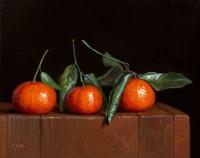 http://www.abbeyryan.com/files/gimgs/th-56_abbeyryan-2020-three-mandarins-leaves-8x10-small.jpg