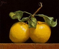 http://www.abbeyryan.com/files/gimgs/th-56_abbeyryan-2020-yellow-apples-together-5x6.jpg